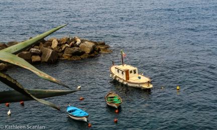 A bay area in Cinque Terre Italy