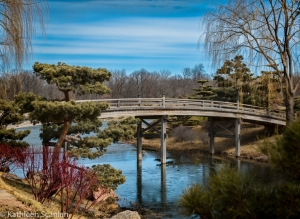 Japenese Garden Bridge-