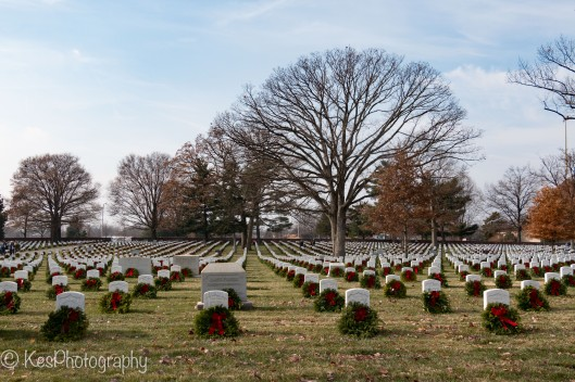 Arlington Wreath Laying-3315